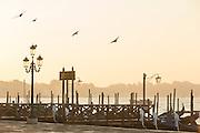 Gondolas seen from St Mark's Square.Venice, Italy, Europe
