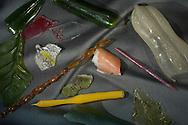 DEU, Deutschland: Die letzten Glasscherben die in der verfallenen Werkstatt von Leopold und Rudolf Blaschka in Dresden Hosterwitz gefunden wurden, dieses Glasmodell stammt aus dem Werk der naturwissenschaftlichen Glaskünstler Leopold Blaschka (1822-1895) und Sohn Rudolf Blaschka (1857-1939). Zwischen 1863 und 1890 entstanden in der Dresdner Werkstatt Tausende Glasmodelle wirbelloser Meerestiere, die ihren Weg in Museen und Universitäten der ganzen Welt fanden. Diese Nachbildungen verblüffen bis heute, denn sie sind morphologisch fehlerfrei und halten naturwissenschaftlichen Betrachtungen bis ins Detail stand - die perfekte Verschmelzung von Kunst und Naturwissenschaft. Die Blaschkas hatten keine Lehrlinge und es gibt keine weiteren Nachfahren. Vater und Sohn haben das Geheimnis ihrer einzigartigen Technik mit ins Grab genommen, Blaschka Haus, Dresden, Sachsen | DEU, Germany: Last cullet founded in the dilapidated Blaschka-Workshop,  this glass model originated from the work of the scientific glass artists Leopold Blaschka (1822-1895) and his son Rudolf Blaschka (1857-1939). Between 1863 and 1890 thousands of glass models of invertebrates sea animals developed in the workshop in Dresden, which found their way in museums and universities of the whole world. These reproductions amaze until today, because they are morphologically exact and withstand scientific examinations in detail - the perfect fusion of art and natural science. The Blaschkas didn?t have apprentices and it gives no further descendants. Father and son took the secret of their inimitable technology also in the grave, Blaschka house, Dresden, Saxonia |