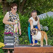 Cabrillo Kennel Club 07/23/2021