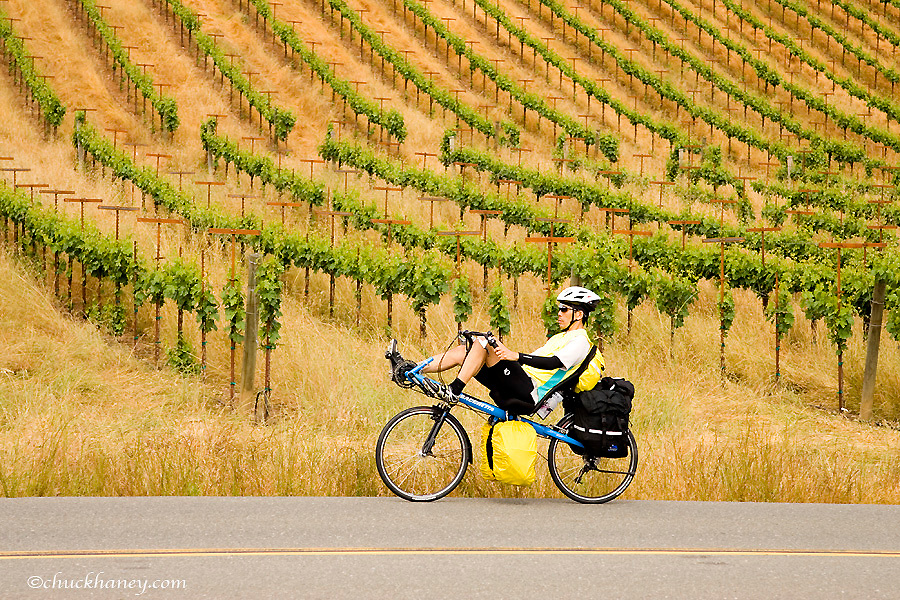 Bicycling touring of Sonoma County in California model released