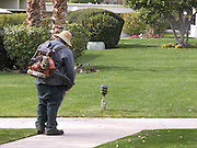 gardener blowing dirt of the path USA