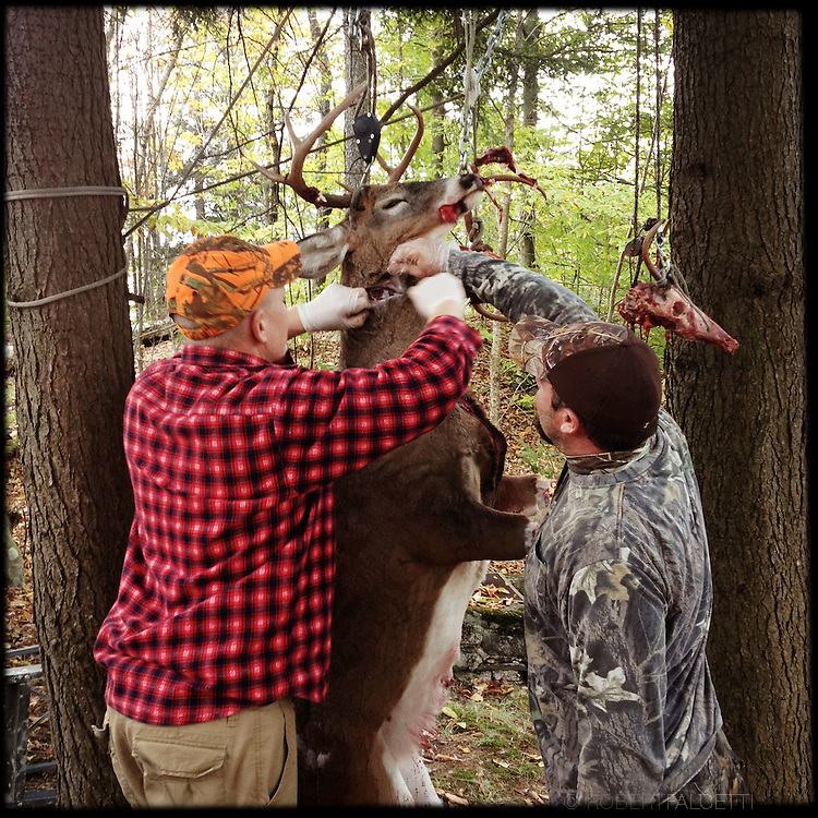NY Hunting 2012 NY Hunting 2012