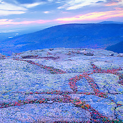 Autumn on Cadillac Mountain at sunset. Blue Hill Overlook. Acadia National park on Mount Desert Island. Maine
