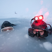 Shawn Harper and Heloise Chenelot emerge from the icy waters of the Arctic Ocean.