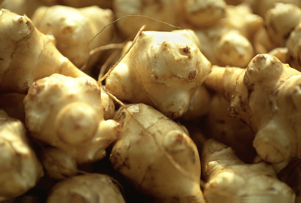 """Close up selective focus of a pile of raw Sunchokes or """"Jerusalem Artichokes"""""""