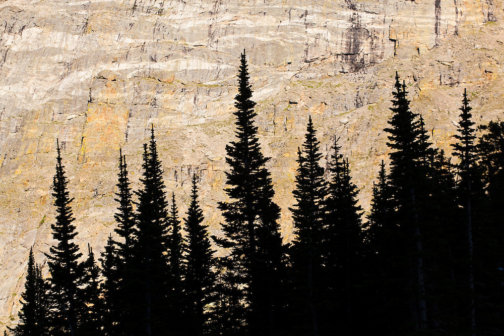 Trees silhouetted against steep valley walls in Rocky Mountain National Park, Colorado.