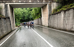 Peloton in Goriska Brda during 4th Stage of 26th Tour of Slovenia 2019 cycling race between Nova Gorica and Ajdovscina (153,9 km), on June 22, 2019 in Slovenia. Photo by Vid Ponikvar / Sportida