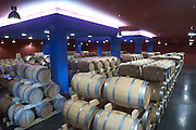 barrel aging cellar chateau belgrave haut medoc bordeaux france