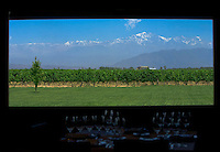 The view from the dining room at Bodega Ruca Malen in the Luján de Cuyo area of Mendoza, Argentina, looks over Malbec vines. The bodega offers a five-course tasting menu with pairing of it's own wines.