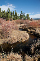 """""""Martis Creek""""- Martis Creek was photographed in the Martis Meadows near Trucke, CA."""