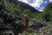 Hiker, Pelekunu Valley, Molokai, Hawaii<br />