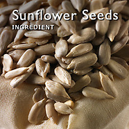 Sunflower Seed Pictures   Sunflower Seed Photos Images & Fotos