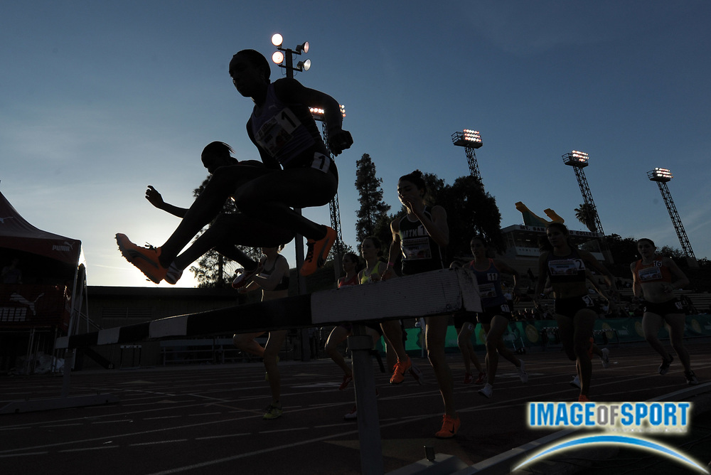 Apr 19, 2012; Walnut, CA, USA; Silhouette of Korene Hinds (JAM) hurdling a barrier in the invitational womens steeplechase in the 54th Mt. San Antonio College Relays at Hilmer Lodge Stadium. Hinds won in 9:42.27.