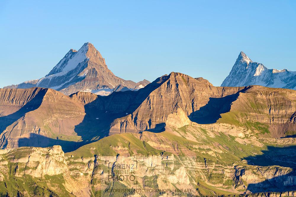 Impressionen am Augstmatthorn (2137) oberhalb des Brienzersees an einem späten Sommertag Ende August. Blick in die Berner Alpen mit Lauteraarhorn, Schreckhorn und Finsteraarhorn.