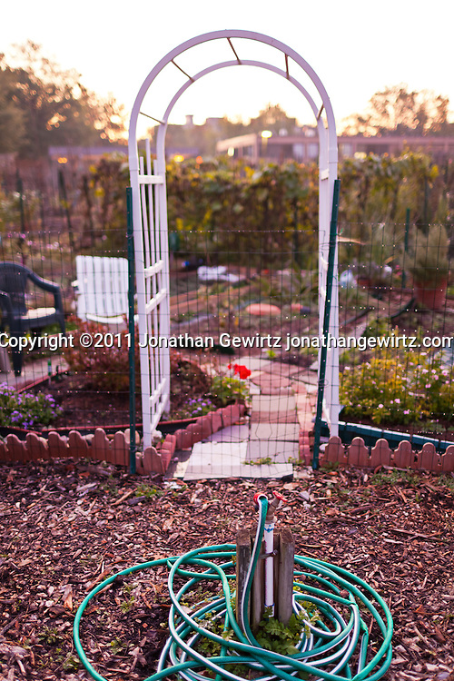 An arch arbor, water spigot and and hose in a community garden. WATERMARKS WILL NOT APPEAR ON PRINTS OR LICENSED IMAGES.