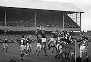 Up highest in this line out jump were Irish W A Mulcahy, and Scottish John Douglas, .Douglas narrowly failed to hold it, but the waiting hand of Kenneth Ross, partly hidden, is ready to grab it,..Irish Rugby Football Union, Ireland v Scotland, Five Nations, Landsdowne Road, Dublin, Ireland, Saturday 24th February, 1962,.24.2.1962, 2.24.1962,..Referee- N M Parkes, Rugby Football Union, ..Score- Ireland 6 - 20 Scotland, ..Irish Team, ..F G Gilpin, Wearing number 15 Irish jersey, Full Back, Queens University Rugby Football Club, Belfast, Northern Ireland,..W R Hunter, Wearing number 14 Irish jersey, Right Wing, C I Y M S Rugby Football Club, Belfast, Northern Ireland, ..M K Flynn, Wearing number 13 Irish jersey, Right Centre, Wanderers Rugby Football Club, Dublin, Ireland, ..D Hewitt, Wearing number 12 Irish jersey, Left centre, Instonians Rugby Football Club, Belfast, Northern Ireland,..N H Brophy, Wearing number 11 Irish jersey, Left wing, Blackrock College Rugby Football Club, Dublin, Ireland, ..G G Hardy, Wearing  Number 10 Irish jersey, Stand Off, Bective Rangers Rugby Football Club, Dublin, Ireland,  ..J T M Quirke, Wearing number 9 Irish jersey, Scrum Centre, Blackrock College Rugby Football Club, Dublin, Ireland, ..S Millar, Wearing number 1 Irish jersey, Forward, Ballymena Rugby Football Club, Antrim, Northern Ireland,..A R Dawson, Wearing number 2 Irish jersey, Forward, Wanderers Rugby Football Club, Dublin, Ireland, ..R J McLoughlin, Wearing number 3 Irish jersey, Forward, University College Dublin Rugby Football Club, Dublin, Ireland, ..W A Mulcahy, Wearing number 4 Irish jersey, Captain of the Irish team, Forward, Bohemians Rugby Football Club, Limerick, Ireland,..W J McBride, Wearing number 5 Irish jersey, Forward, Ballymena Rugby Football Club, Antrim, Northern Ireland,..D Scott, Wearing number 6 Irish jersey, Forward, Malone Rugby Football Club, Belfast, Northern Ireland, ..M L Hipwell, Wearing number 8 Irish jersey, Forward, Terenure Rugby Football Clu