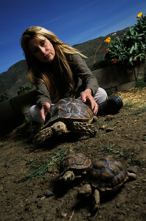 Susan Tellem with some of the tortoises she's rescued.