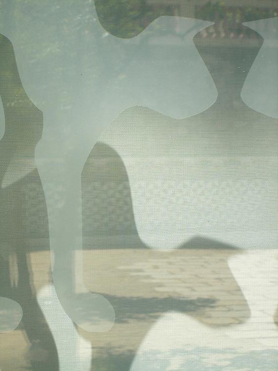 Impresión de silueta de gato sobre vidrio en un escaparate de la Font del Gat, Barcelona.