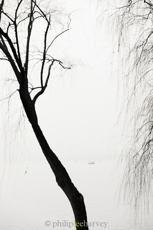 Black and white landscape with view of silhouetted trees against a lake at dawn, West Lake, Hangzhou, Zhejiang Province, China