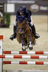 Coulter Audrey, (USA), Domino <br /> Indoor Brabant - 's Hertogenbosch 2016<br /> © Hippo Foto - Dirk Caremans<br /> 12/03/16