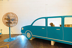 © Licensed to London News Pictures. 20/08/2016. Dog enjoying artwork titled 'Cruising Canines' an open car window simulator where a giant fan wafts a dog's favourite scents by DOMINIC WILCOX.  The world's first art exhibition for dogs was created by artist DOMINC WILCOX is part of the MORE THAN's #PlayMore campaign, encouraging owners to spend more time playing with their pets.  London, UK. Photo credit: Ray Tang/LNP