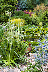 Eryngium x oliverianum and Eryngium agavifolium planted in a bed covered with pebbles and rocks. Pond with water lilies beyond