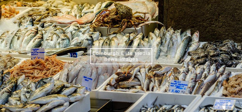Fresh fish for sale on a market stall in Bologna, Italy.<br /> <br /> (c) Andrew Wilson | Edinburgh Elite media