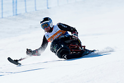 DEVLIN-YOUNG Christopher, USA, Giant Slalom, 2013 IPC Alpine Skiing World Championships, La Molina, Spain