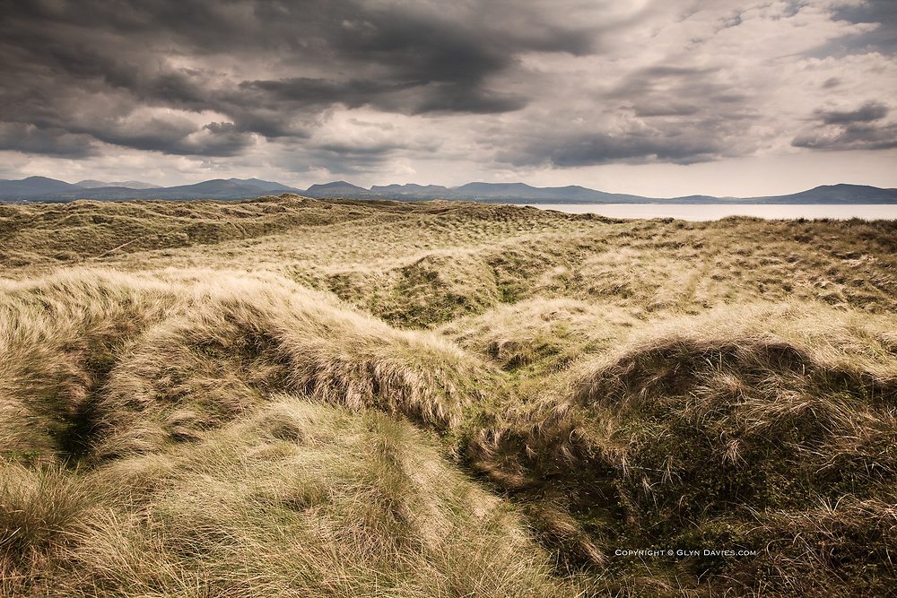 One of a very short series taken for real, whilst being filmed for an ITV News program, shot at Newborough Dunes, Anglesey.