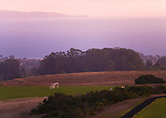 Dusk at UCSC, Monterey Bay in background, Santa Cruz, California