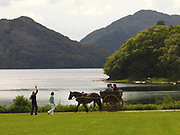 A jaunting cart at Muckross House, Killarney, Ireland.<br /> Picture by Don MacMonagle