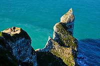 France, Seine-Maritime (76), Pays de Caux, Côte d'Albâtre, Etretat, la falaise d'Aval, l'Arche d'Aval et l'Aiguille // France, Seine-Maritime (76), Pays de Caux, Côte d'Albâtre, Etretat, the cliff of Aval, the Arche d'Aval and the Aiguille