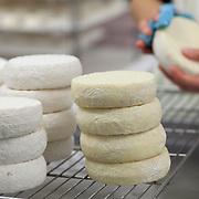 Biological, Organic farming, cheese activity