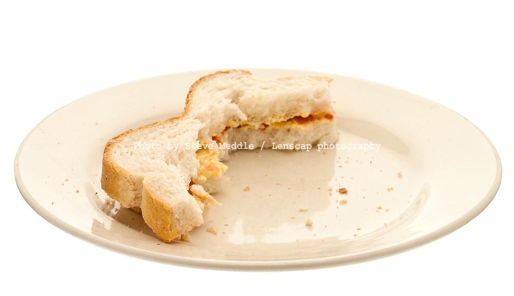 Half Eaten Sandwich on a Plate