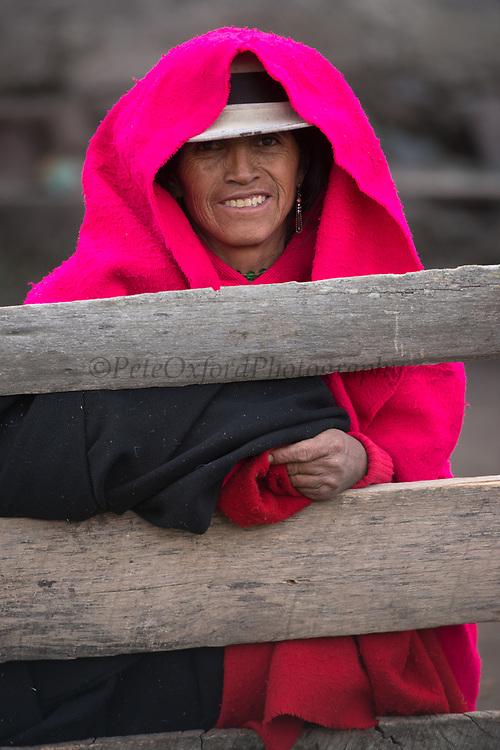 Indian woman<br /> Maria Rosa Cayambe<br /> Pulingue San Pablo community<br /> Chimborazo Province<br /> Andes<br /> ECUADOR, South America