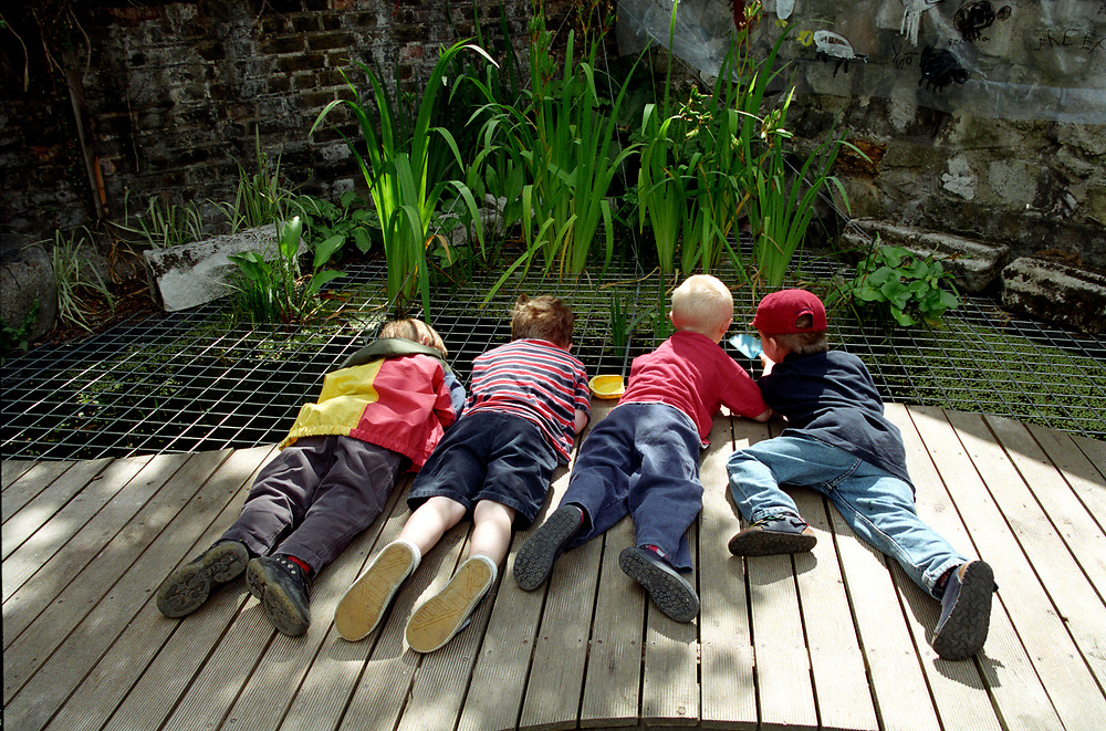 Boys pond dipping at open air nursery,