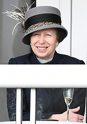 The first day of The Cheltenham Festival 2018 at Cheltenham Racecourse, Cheltenham, Gloucestershire, UK, on the 13th March 2018. 13 Mar 2018 Pictured: Princess Anne, Princess Royal. Photo credit: James Whatling / MEGA TheMegaAgency.com +1 888 505 6342