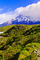 Nordenskjold Trail (Paine Grande in background), Lake Nordenskjold, Torres del Paine National Park, Patagonia, Chile