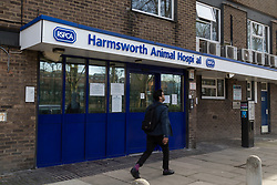 """""""Angus"""" the ginger tom cat who was discovered impaled on three steel fence spikes in North London continues to recover at the RSPCA's Harmsworth Animal Hospital in north London, following lifesaving surgery to remove the 20mm thick spikes from his body. PICTURED: Harmsworth Animal Hospital in north London. March 14 2018."""