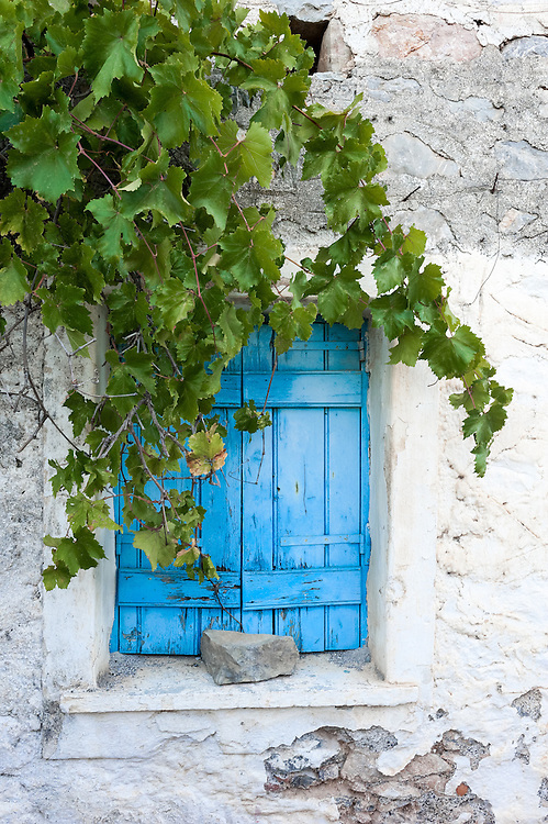 A typical window with a vine growing just outside for shade in the summer  in the medieval village of Mesta, Chios, Greece