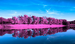 Treeline Infrared reflections on the side of a lake. A shot from Broemmelsiek Park Lake at the intersection of Schwede and Wilson roads, off State Road DD in Wentzville (New Melle) Missouri