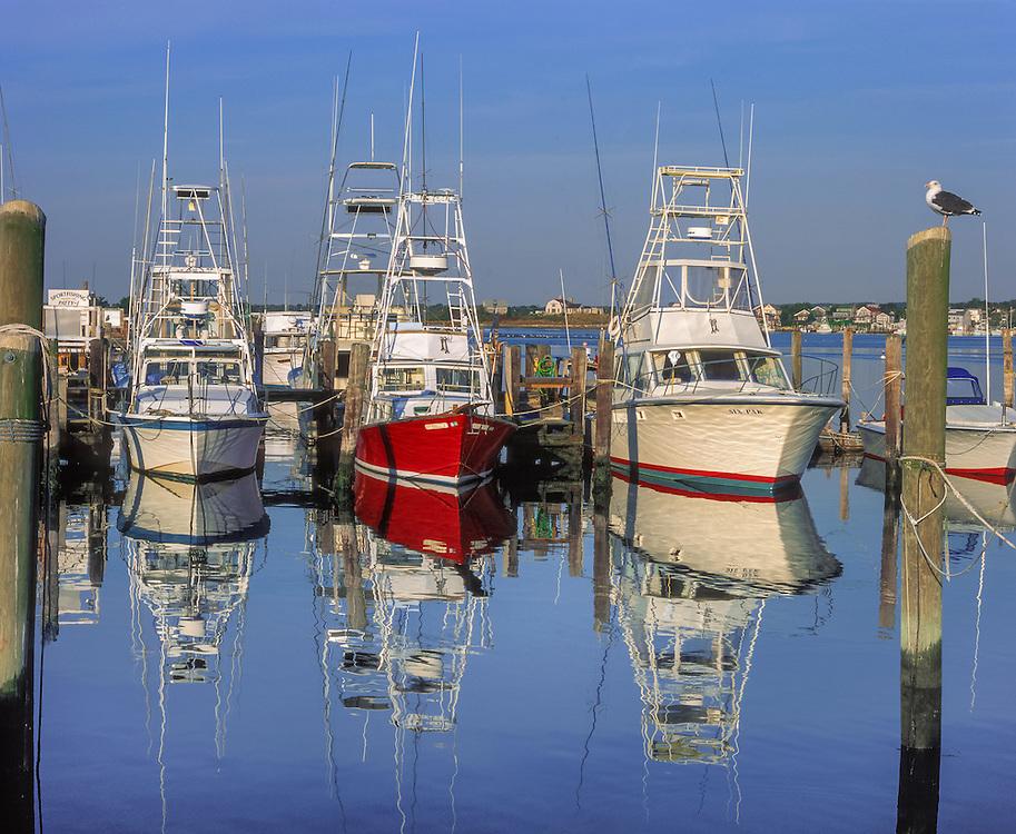 Sport fishing boats & reflections in still water, Galilee, RI