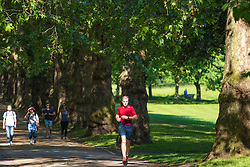 Green Park, London, June 6th 2016. A jogger runs through the dappled sunshine in London's Green Park as weather forecasters predict temperatures for London to be in the mid-twenties.