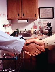 veternarian office hand shake parrot in background