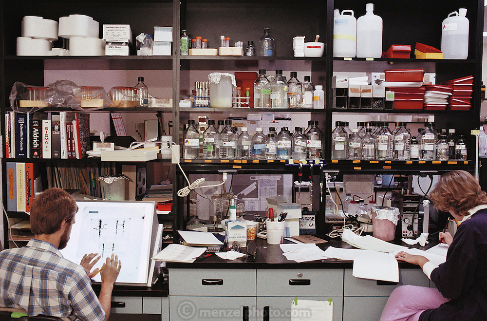 (1992) Ray White's Lab at the University of Utah, genetics department. Checking autoradiograms for DNA typing of family--mother, father, and seven siblings.