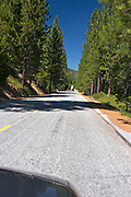 Driving through Sequoia National Forest, California.