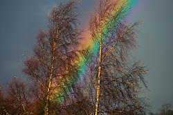 Rainbow North Wales