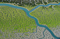 Marshes in Bahíade Cádiz Natural Park, Cádiz, Andalusia, Spain