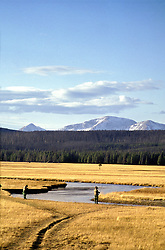 Fall fly-fisherman trying their luck on the Gibbon River in Yellowstone National Park.