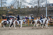 Watching the riding display - The Duchess of Cornwall, President, Ebony Horse Club, visits the charity's Brixton riding centre. The centre is celebrating its 21st birthday and its 6th year on this site. London 16 Feb 2017 .